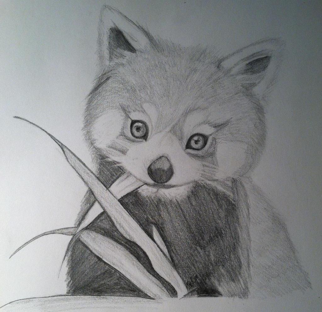 Nicks Red Panda by LonelyAardvark on DeviantArt