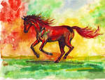 Gallop in colours by kutiska