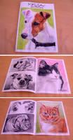 KRIZOK Portraitist Artbook