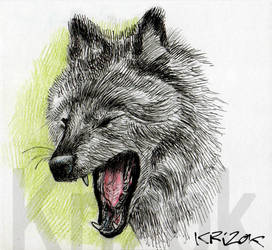 Wolf - Sketch 4 by krizok
