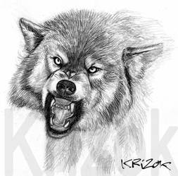 Angry Fangs by krizok