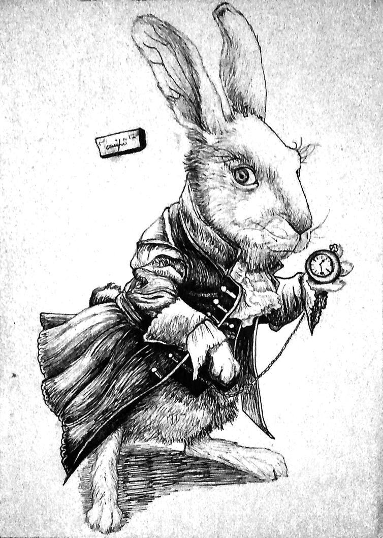 White Rabbit by Yankeestyle94 on DeviantArt
