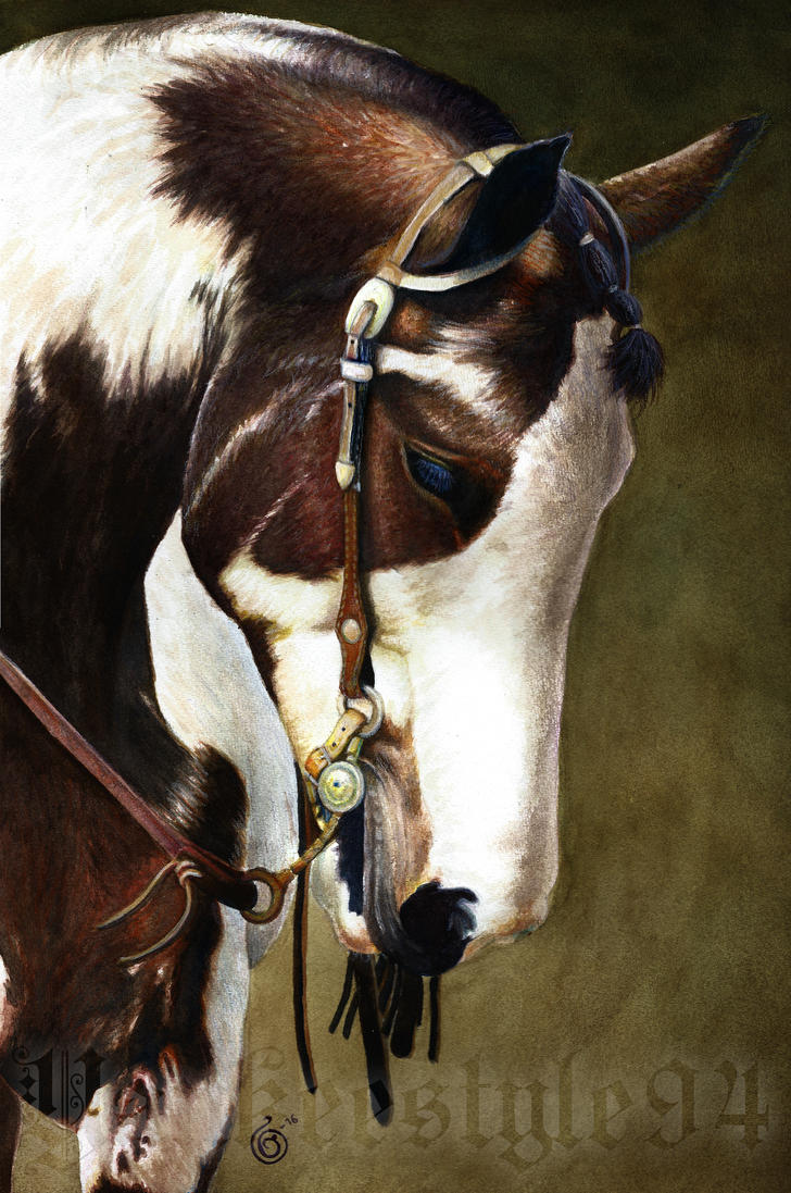 American Paint Horse Portrait by Yankeestyle94