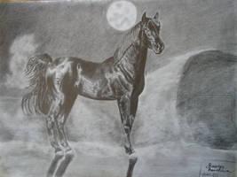 Horse in the Desert by ChristianScar
