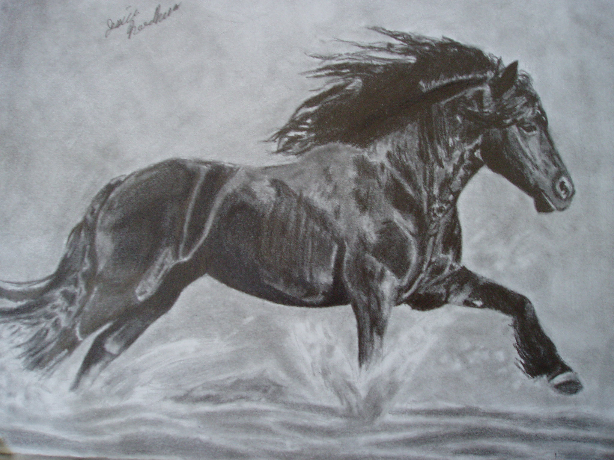 Horse by ChristianScar