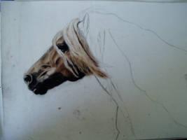 A work in progress by ChristianScar