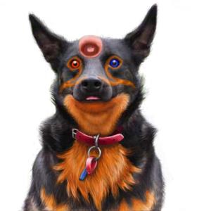 Ctougas01's Profile Picture