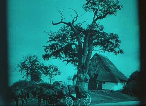 Nosferatu land by VIPANCHI