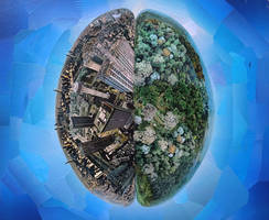 Planetary brain collage