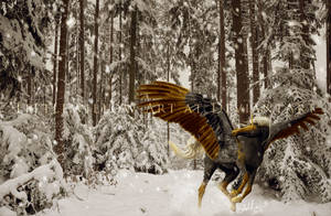 winter's waltz by littlewillow-art