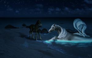 Night Magic by littlewillow-art