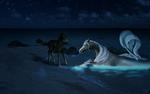 Night Magic