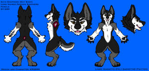 New Reference Sheet