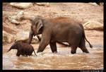 Mum and Mali