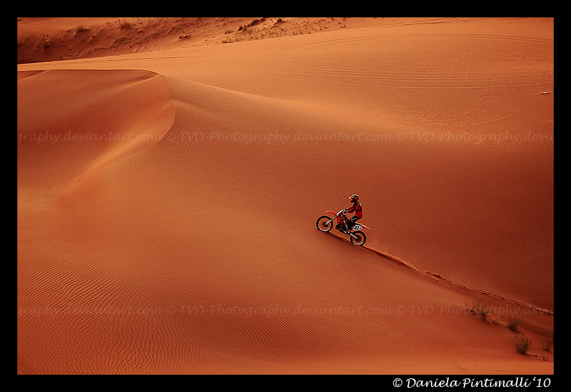 Desert Biking V by TVD-Photography