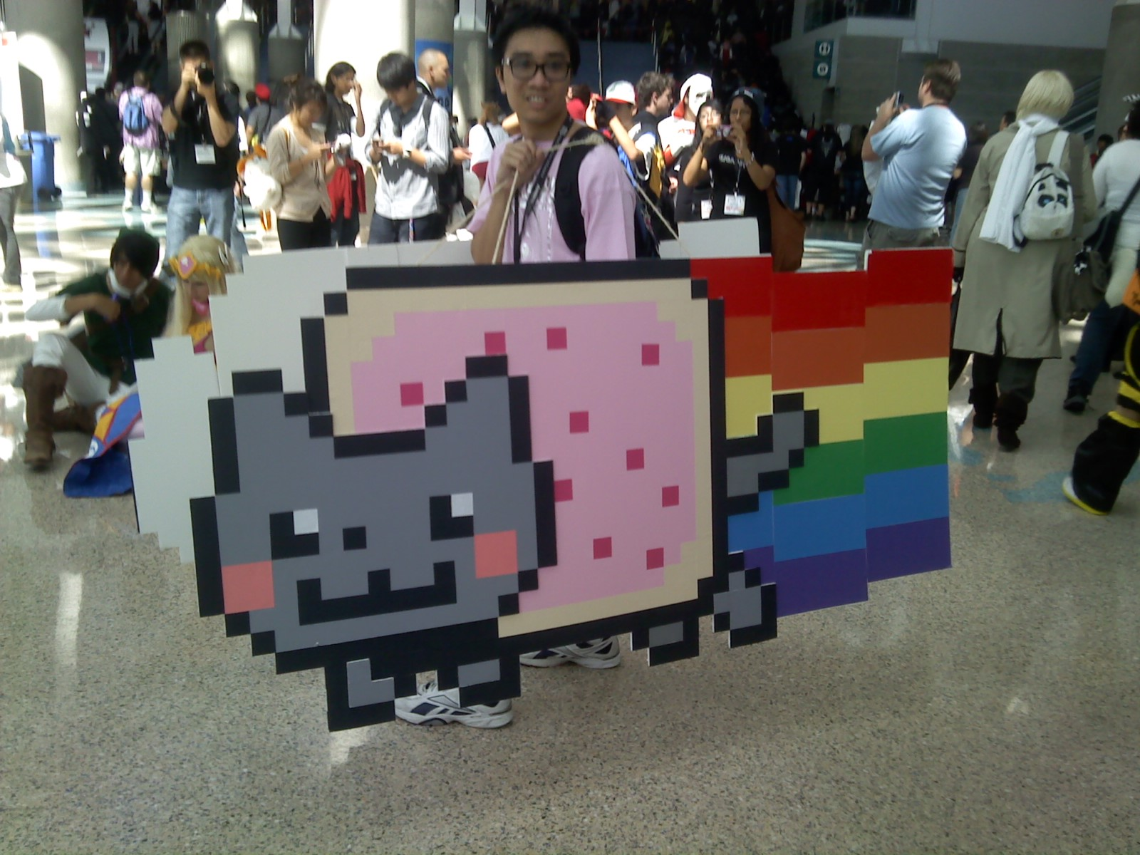 Nyan cat cosplay by TheAwesomeNordics