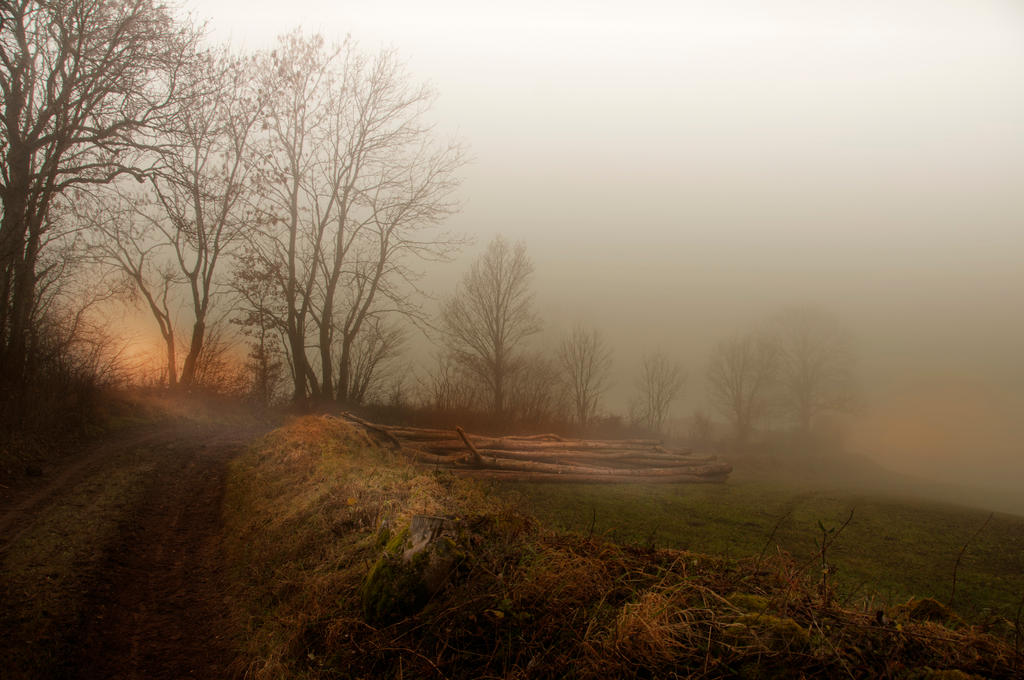 Foggy by Louisolah