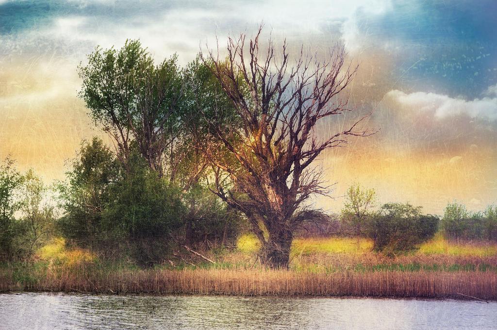 Riverside by Louisolah