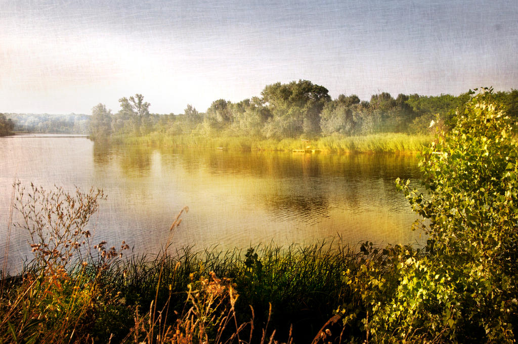 Morning in the tisza
