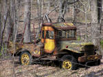 Power Wagon in the Woods