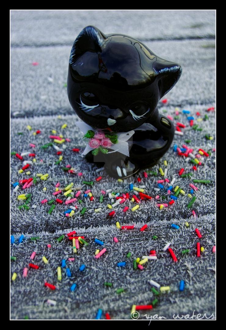 Like A Black Cat by StellaWaters
