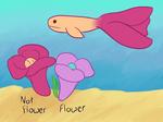 {Wyn} Flora fish