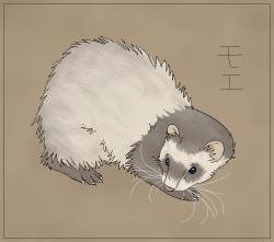 Ferret Moe by GeneralAster