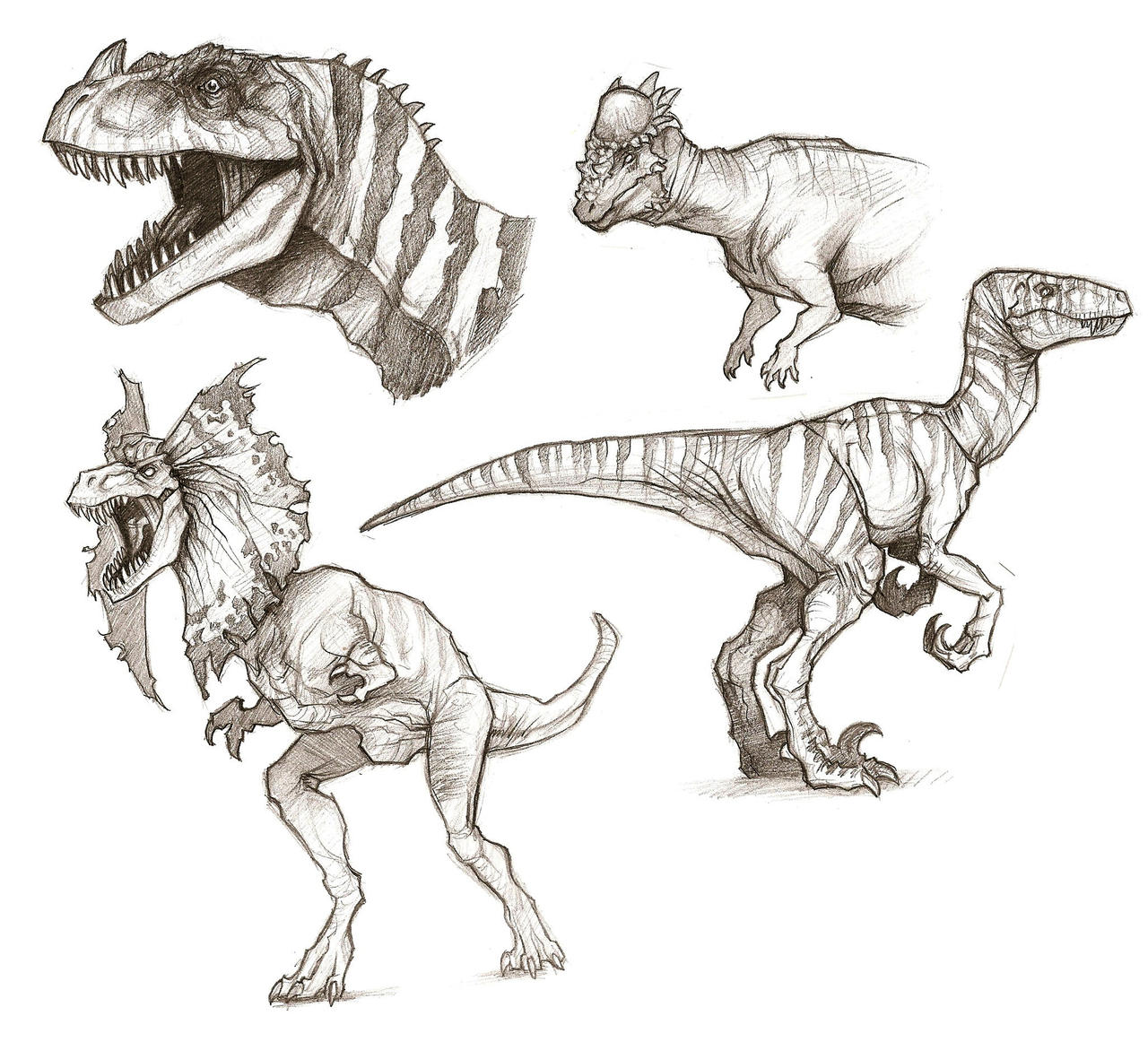 Uncategorized Sketches Of Dinosaurs dino sketches by notesz on deviantart notesz