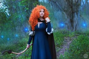 Brave - Princess Merida by TimmyFrost