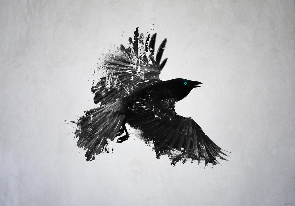 Black Crow by TuneBake on DeviantArt