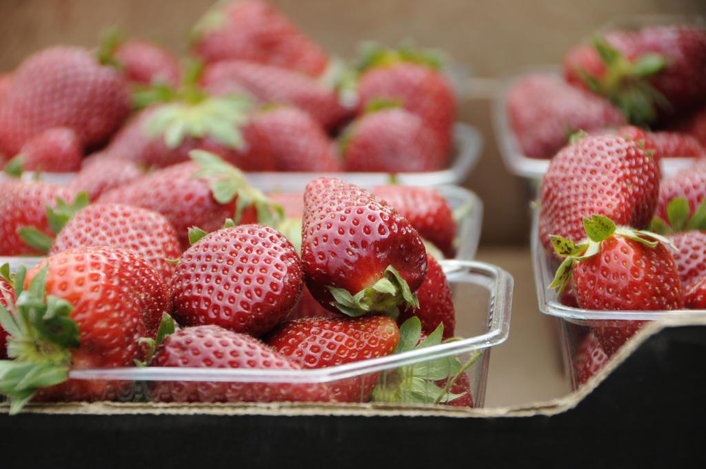 strawberries by Shivchik