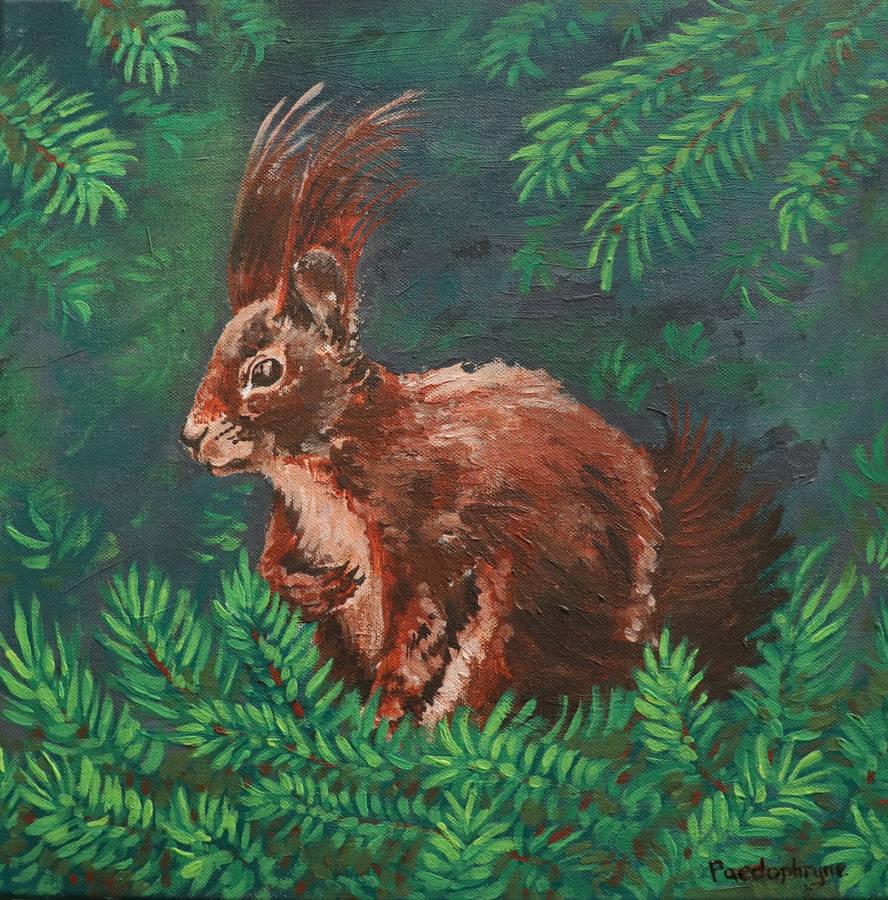 Squirrel by Paedophryne