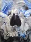 skull and birds 8