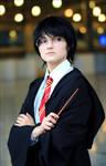pupil of Gryffindor