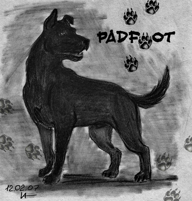 Sirius Black as Padfoot by Magrat-me on DeviantArt