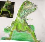 Green Lizard by Ljtigerlily