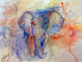 Elephant Watercolour by Ljtigerlily
