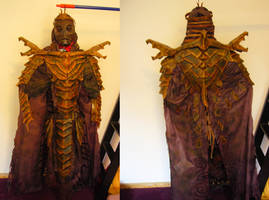my Dragon Priest costume is finally finished