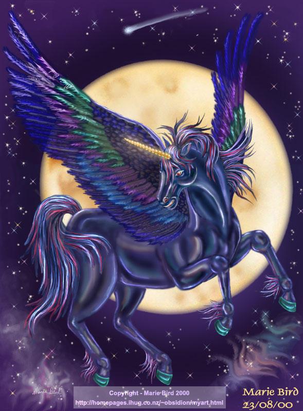 Unicorn of the Night