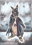 Rabbit in the Matrix