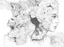 Pencil drawing Mash up