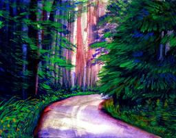 evergreen grove by beckhanson