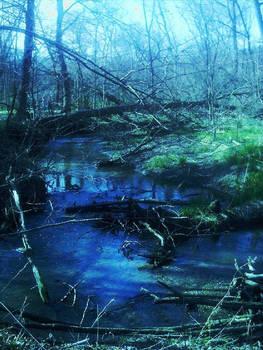 nature excursions pt. 2
