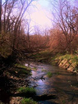 nature excursions pt. 3