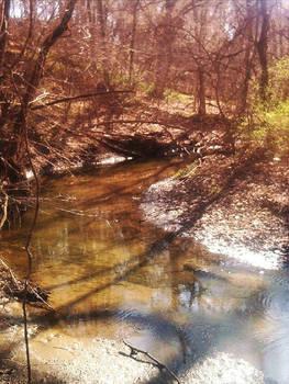 nature excursions pt. 4