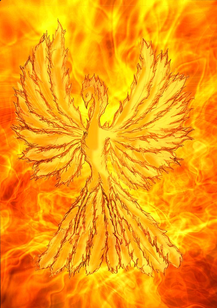 Phoenix by LordPhantasmus