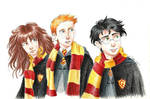 The Golden Trio: First Year