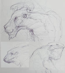 Creature Sketchbook JAM 01 by QuantumSushi