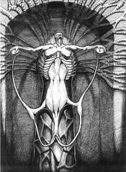 Woman as Vagina by rizole