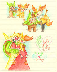 Pokemon: Knight x Mage